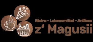 Logo Magusii Termen